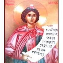 Icoana Sfantul Prooroc Daniel 23x31 cm