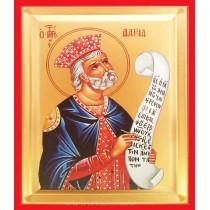 Icoana 19X25 cm Sfantul Prooroc David