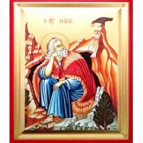 Icoana Sfantul Prooroc Ilie 14X18 cm