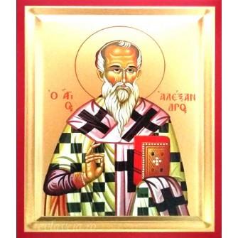 Icoana Pictata Sfantul Alexandru 14X18 cm