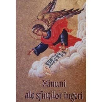 Minuni ale Sfintilor Ingeri