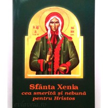 Viata si Acatistul Sfintei Xenia din Sankt Petersburg