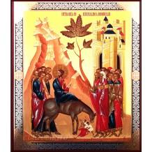 Icoana 18X22 cm Intrarea Domnului in Ierusalim