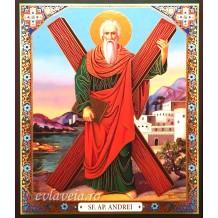 Icoana Litografie 15X18 cm Sfantul Apostol Andrei