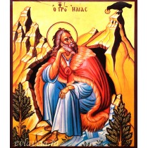 Icoana Sfantul Prooroc Ilie 15X18 cm