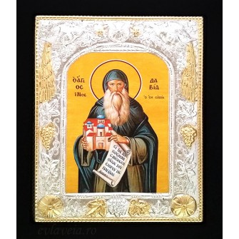 Icoana 19X24 cm Sfantul David din Evia