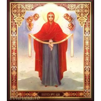 B7 - Icoana 20.5x24.5 cm Acoperamantul Maicii Domnului