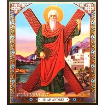 Icoana 20.5X24.5 Sfantul Apostol Andrei