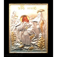 E38 - Icoana 19X24 cm - Sfantul Prooroc Ilie Tesviteanul