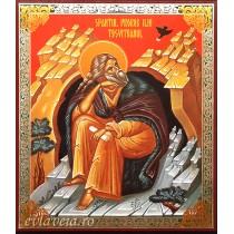 Icoana Sfantul Prooroc Ilie Tesviteanul 11X13 cm